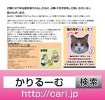 170121 tiiki_cat w800.jpg